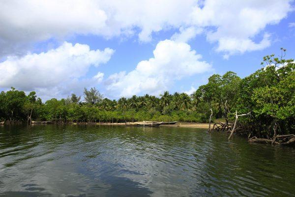 Funzi Island Day Trip 4